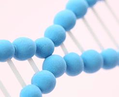 尿酸値と遺伝の関係性